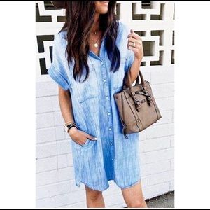 The EVERYDAY Denim Button Down Dress